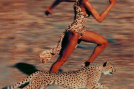 Leopard, Fur