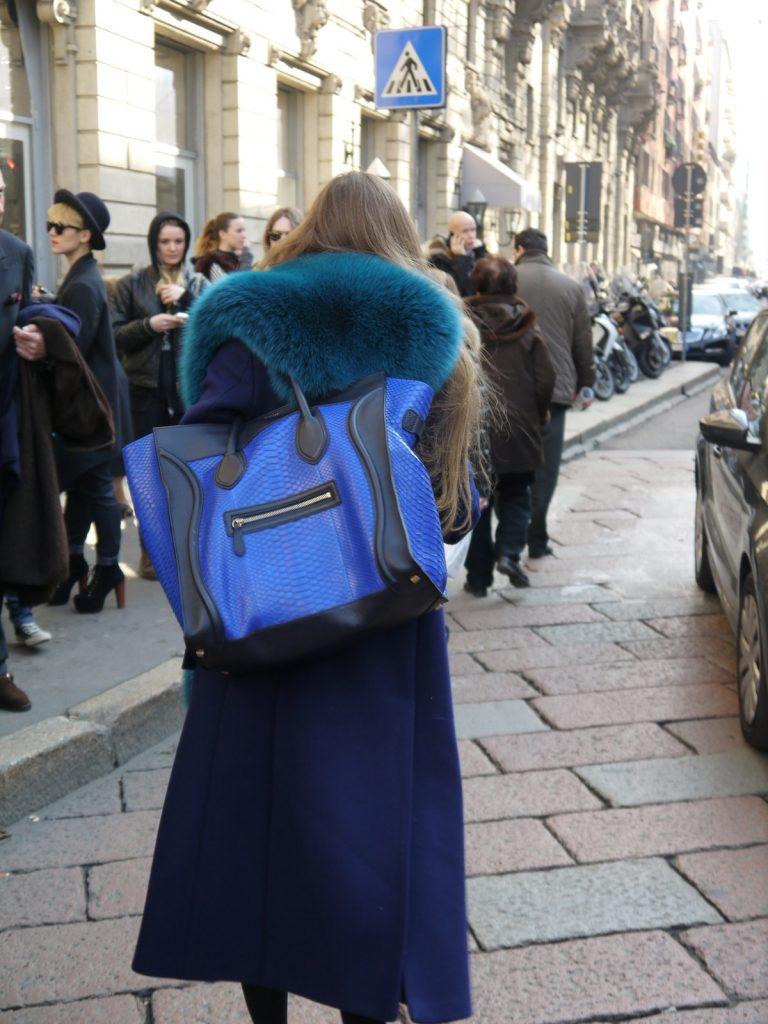 italian leather bags, spotted bag, zebra bag,fur bag,python bag,