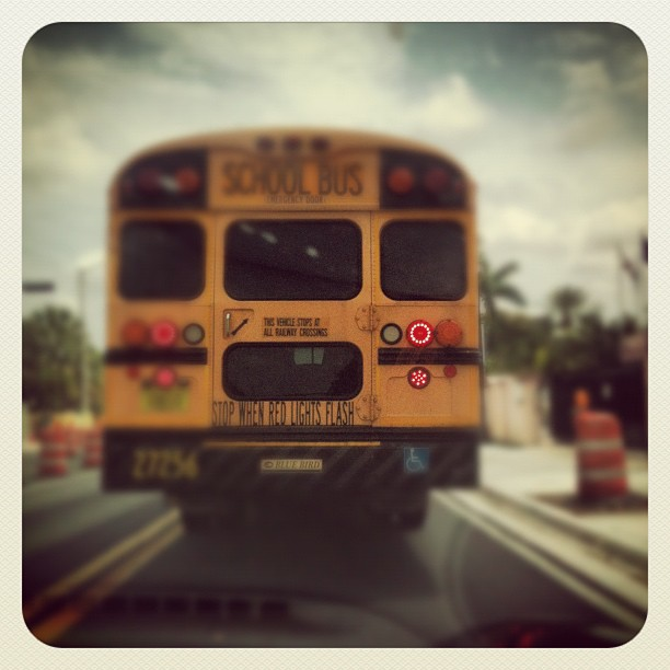 school bus, miami, america