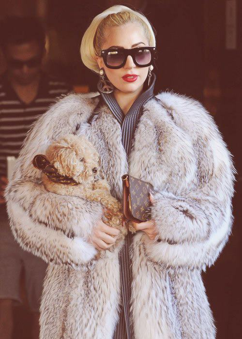 d505a62c0 Lady Gaga in real fur by Hermes