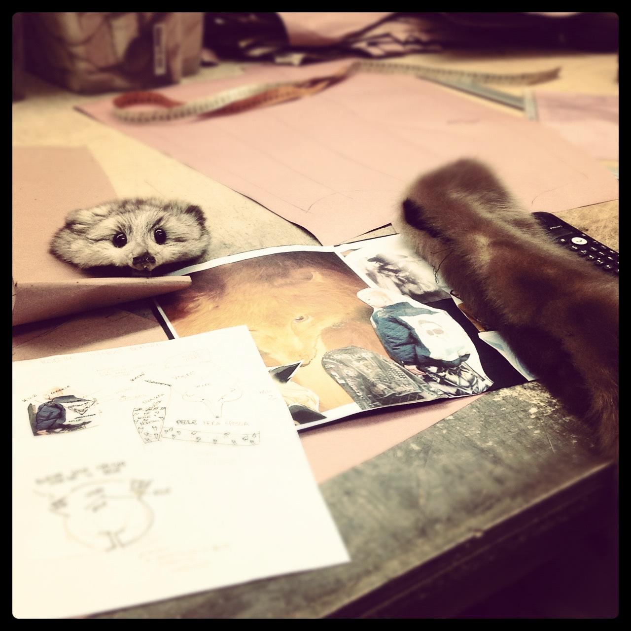 fur_coat_fox_head_draw_fahshion