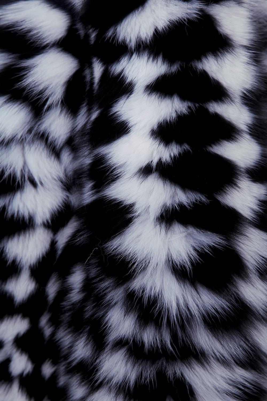 fox_coat