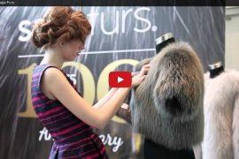 video-saga-furs