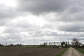 mink farm copenhagen