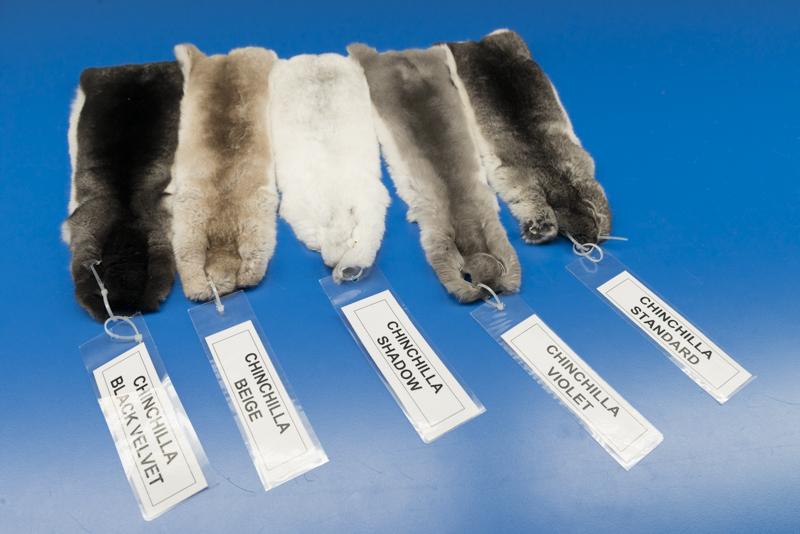 FANTASTIC CHINCHILLA TYPES fur