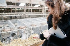 lady fur mink farm