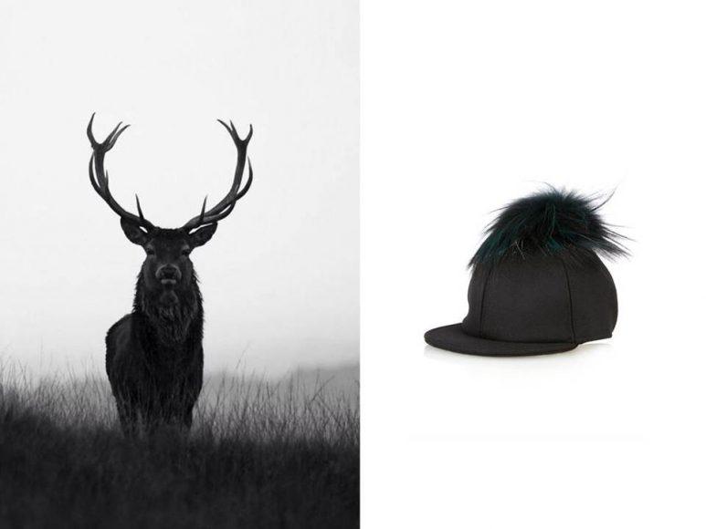 photo fur accessories