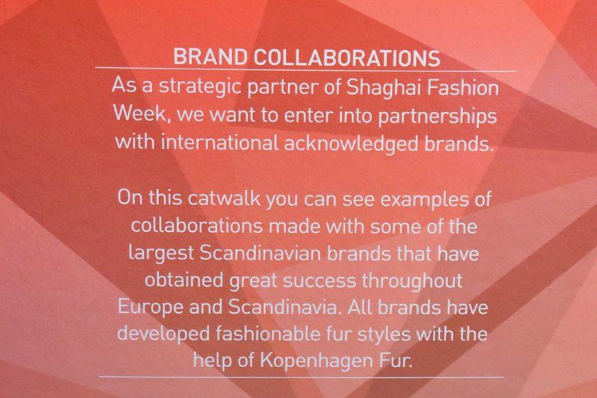 shanghai_fashionweek_2015-2250