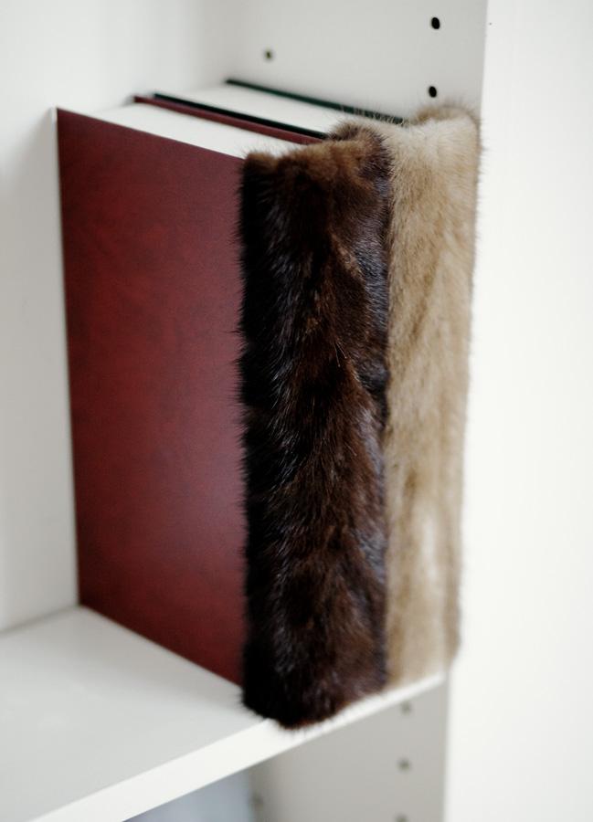 fur book