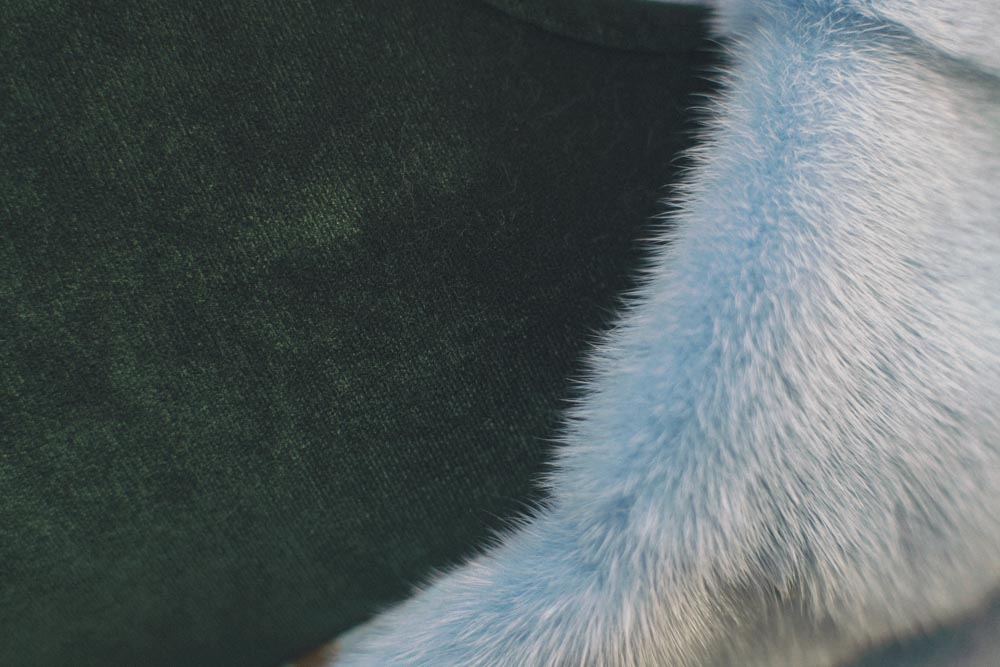 where to buy cheap fur