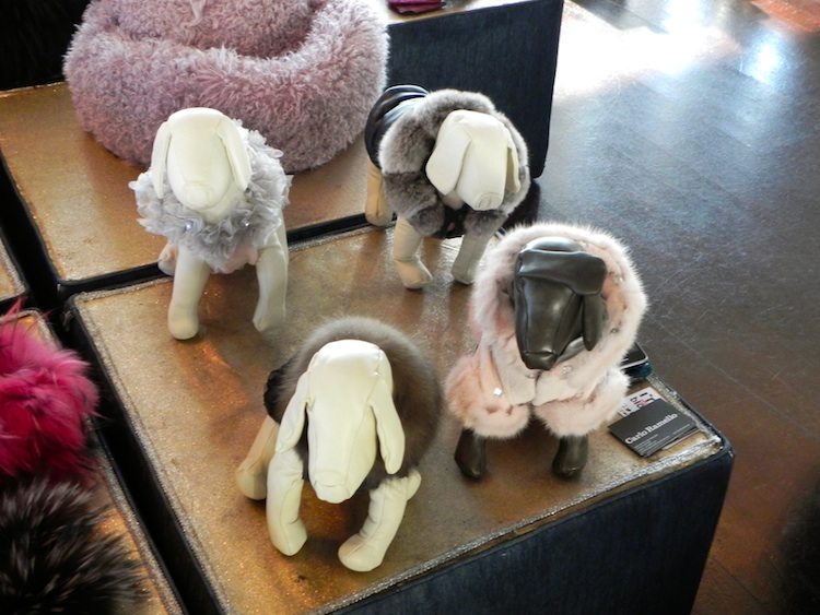 dog fur clothes